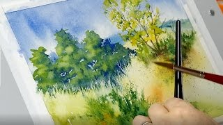 The Mind of Watercolor with Steve Mitchell - Lesson 2 - Landscape Part 2