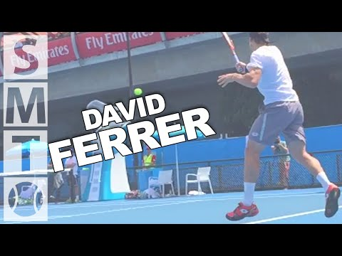 David Ferrer - Australian Open 2015 - Ultimate Shot Compilation in Super Slow Motion