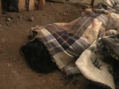 CRUEL ASESINATO DE HERMANITOS EN SANTA LUCIA EN PUNO