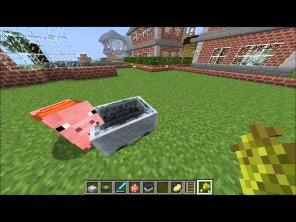 Minecraft comment se diriger dos de cochon hd youtube - Minecraft cochon ...
