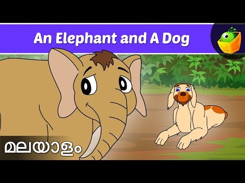 Elephant And The Dog - Jataka Tales In Malayalam - Animation cartoon Stories For Kids video
