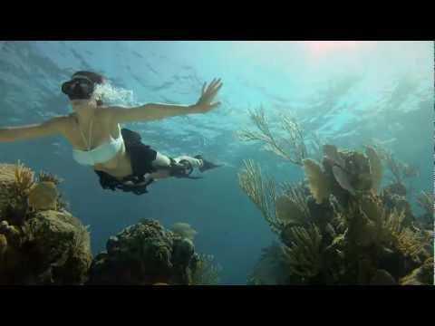 Thumbnail of video GoPro HD: Shark Riders - Introducing GoPro's New Dive Housing