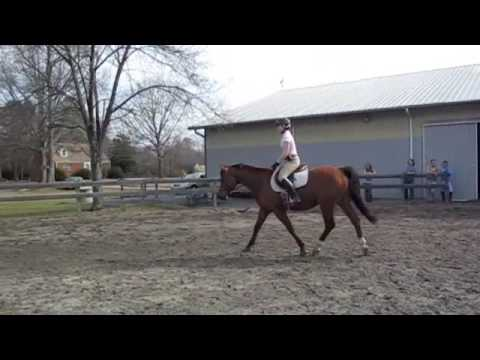 Yard & Groom Riding Demo