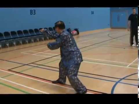 Xingyiquan 12-animal Continueous Fist Image 1