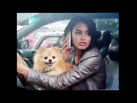 Осторожно Тупые дуры на дороге и за рулем