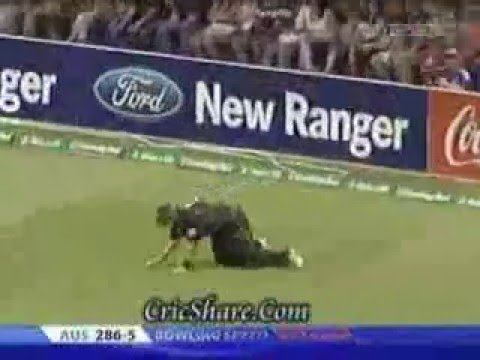 Cricket HAT TRICK Videos
