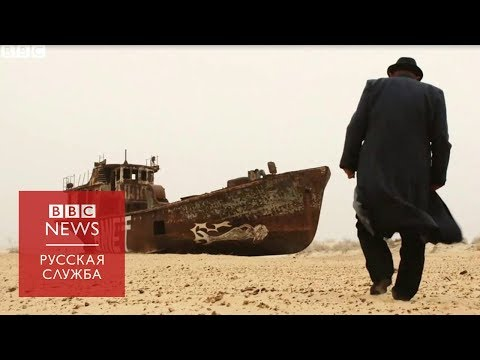 Лес на дне морском: зачем Узбекистан засаживает пересохший Арал