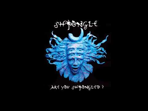 Shpongle - Divine Moments Of Truth (HQ)