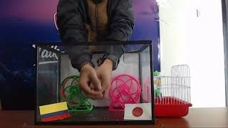 Prediksi Colombia vs Jepang with PO