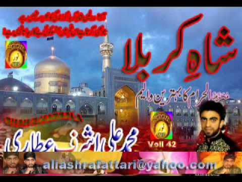 Mp3 Naat Nabi Ke Nawase Hussain Ibne Haidar By Ali Ashraf Attari video