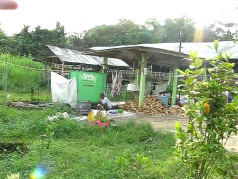 Profil Peternakan Saung Domba International