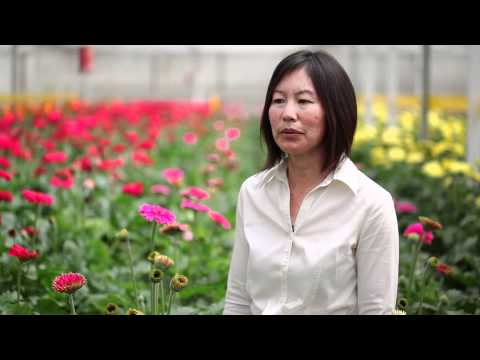 Janet Louie, California Cut Flower Farmer