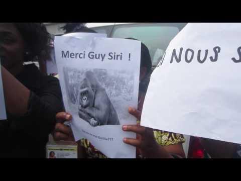 """Des employés de la Monusco protestent contre un chef accusé de les avoir traités de """"gorilles"""""""