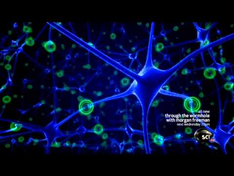 Discovery Science's: Through the Wormhole with Morgan Freeman - Advanced Brain Monitoring Technology