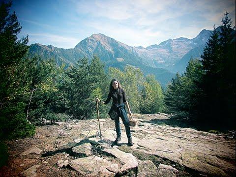 Как мы в Альпы по грибы ходили. Грибы в Италии. Funghi. Vlog