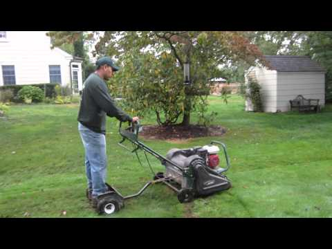 Long Island Lawn Care Services