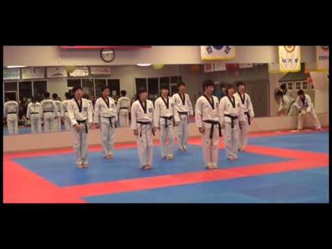 Lee Brothers' Academy Taekwondo Demonstration Image 1
