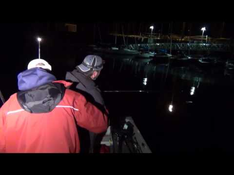 Milwaukee Harbor Salmon Fishing at Night | Crankbait Salmon Fishing Lake Michigan