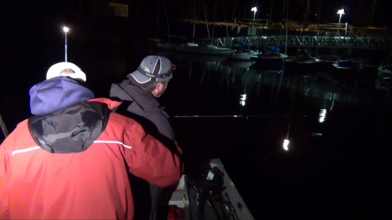 Milwaukee harbor salmon fishing at night crankbait for Milwaukee harbor fishing report