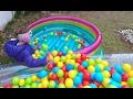 3 zıplama havuzu bahçede nasıl koruyoruz, eğlenceli çocuk videosu