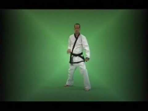 Tang Soo Do: A Visual Guide to Forms (TRAILER) Image 1