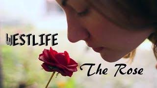 The Rose - Westlife  (tradução) HD