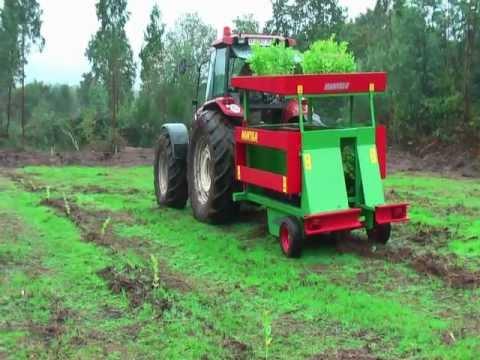 Plantadora de arboles manyelu youtube - Plantar arboles frutales ...