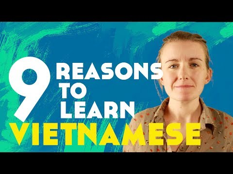 9 Reasons to Learn Vietnamese║Lindsay Does Languages Video