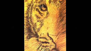 Watch Tangerine Dream Smile video