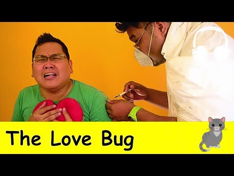 The Love Bug | Family Sing Along - Muffin Songs