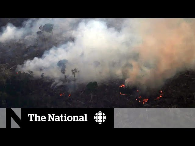 As Amazon burns, Trudeau calls on world leaders to do more