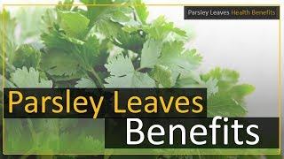 Parsley Leaves Health Benefits