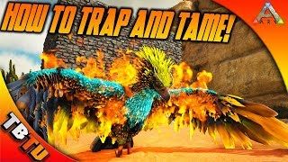 ARK PHOENIX TAMING! HOW TO TRAP AND TAME THE PHOENIX! PHOENIX TRAP TAMING! Ark Survival Evolved