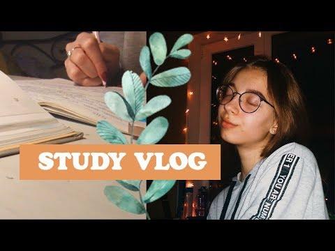 vlog 4 Школа,учеба #StudyVlog  Elizabet Mayer