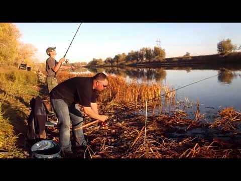 прикормка мечта рыболова