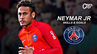 Neymar Jr 2017/2018 ● Skills & Goals ● PSG || HD