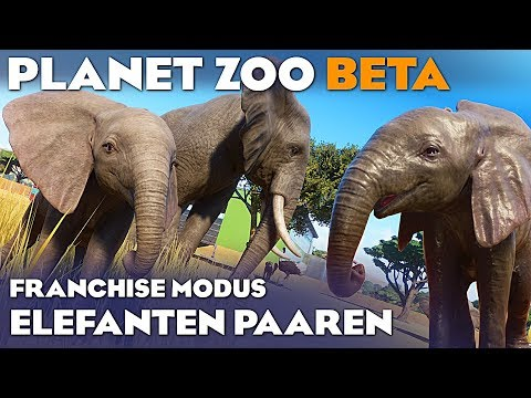PLANET ZOO BETA BABY ELEFANT 4K Planet Zoo Deutsch German Gameplay #25