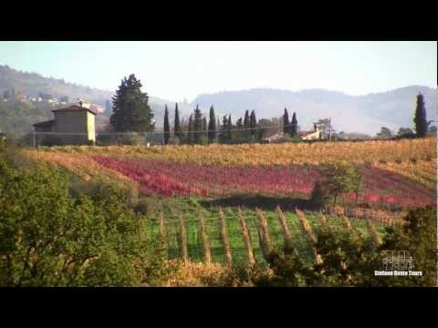 Enchanting Chianti Wine Tour ~ with Stefano Rome Tours