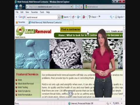 Mold removal, how to become a contractor.wmv