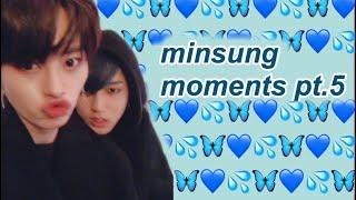 minsung moments pt.5 (minhoxjisung)