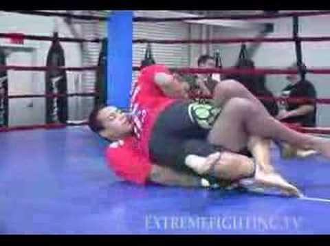 UFC 82 Dan Henderson workout Image 1