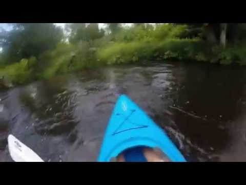 Kayaking and Canoeing Northern Michigan Sturgeon River