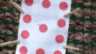 Testing  Several Brands of 22 Long Rifle Bulk Ammo For Accuracy