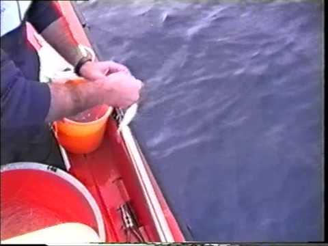 Μηνάς ψάρεμα μουρμούρες παραγάδι