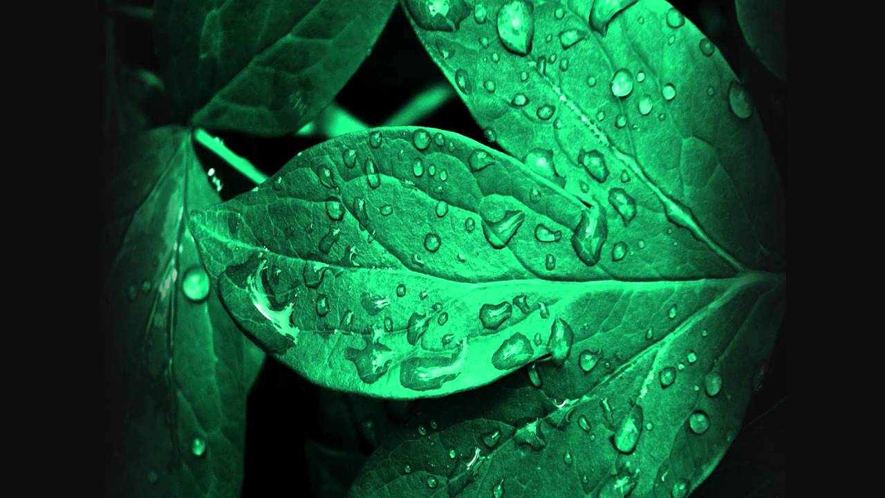 basement jaxx raindrops doorly remix hd youtube