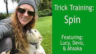 Spin:  Trick Training w/ Such Good Dogs.
