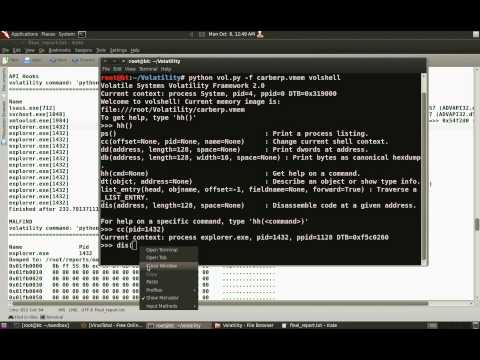 Reversing and Malware Analysis Training - Rootkit Analysis Demo4 (carberp)