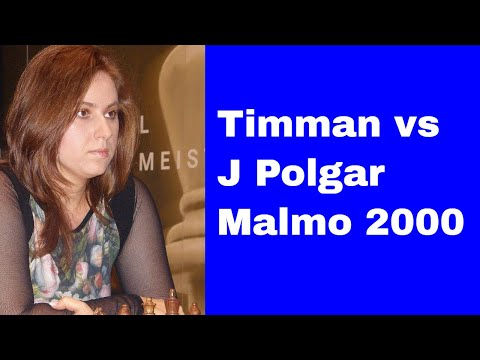 Fascinating Chess Game: J Timman vs J Polgar - Malmo (Sweden) 2000