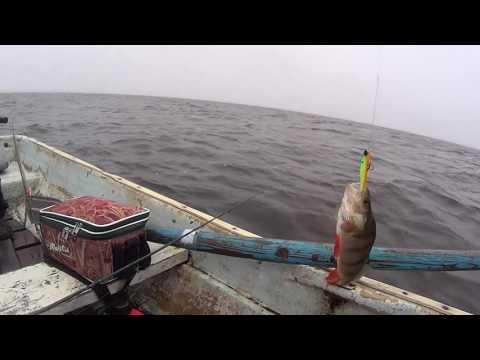 рыбалка в старой ладоге