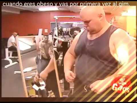 videos graciosos de gordos
